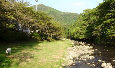 那賀川水系のホームページ|しずおか河川ナビゲーション